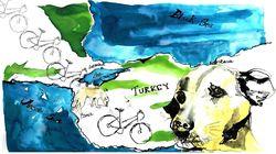 Kisah Pesepeda yang Diselamatkan Hidupnya oleh Anjing Jalanan
