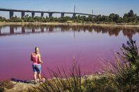 Turis penasaran dengan danau pink (iStock)
