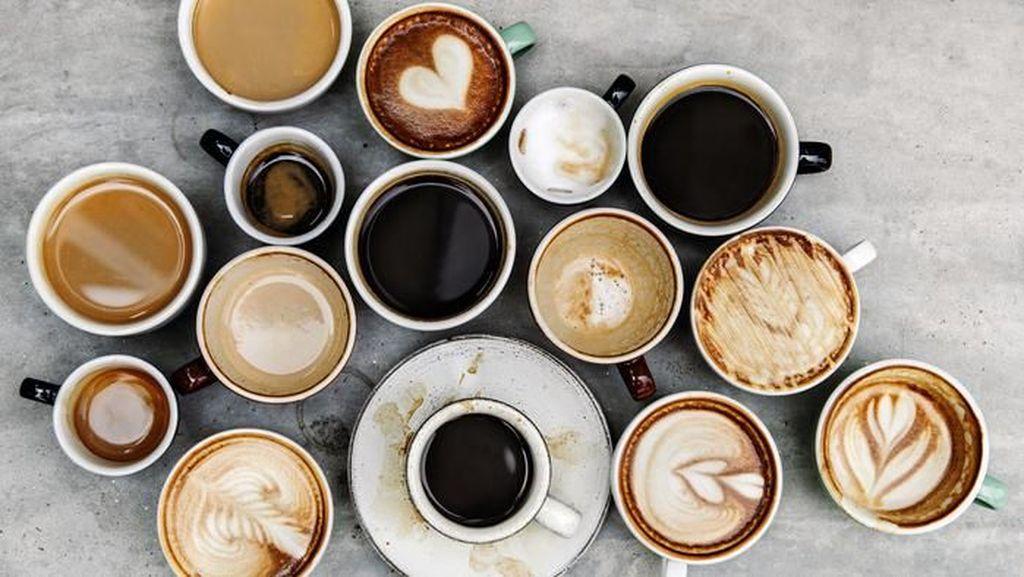 Minum Kopi di Pagi Hari Bikin Dehidrasi? Ini Faktanya