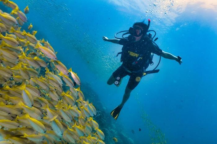 Ilustrasi wanita menyelam. Foto: Dok. iStock