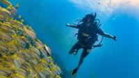 Hoki Nih! Penyelam Nemu Harta Karun Romawi di Dasar Laut, Berapa Nilainya?