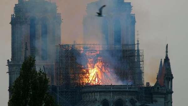 Bos Gucci Sumbang 100 Juta Euro untuk Bangun Gereja Notre Dame