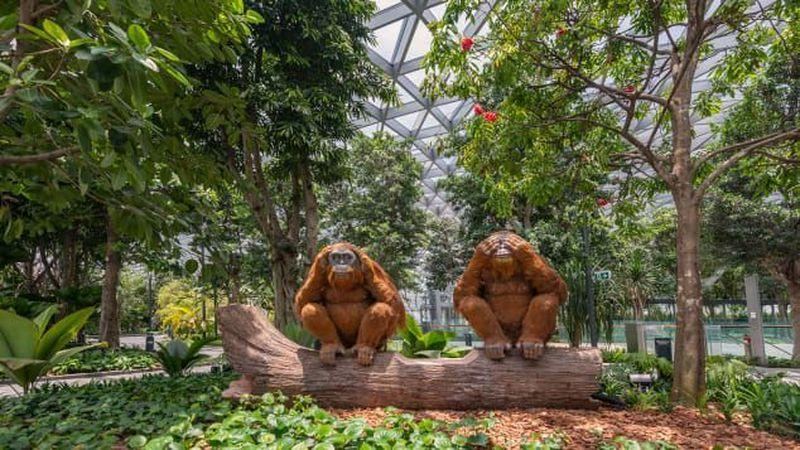 Dirancang oleh arsitek kelas dunia, Moshe Safdie, Jewel menyuguhkan desain multi-dimensi yang unik, yang dilengkapi dengan berbagai atraksi wisata, tempat berbelanja dan restoran, hingga fasilitas bandara yang lengkap dan akomodasi yang dapat dinikmati oleh pengunjung dan wisatawan. (Changi Airport Singapore)