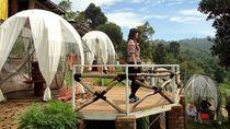 8 Kafe Unik di Bandung, Ada yang Pakai Kardus Hingga Igloo