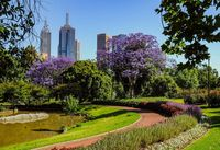 Royal Botanic Garden di Sydney (iStock)