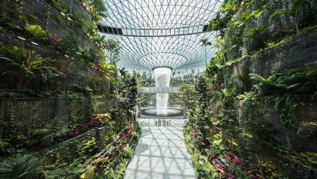 Hanya di Singapura, Bandara dengan 2.000 Pohon