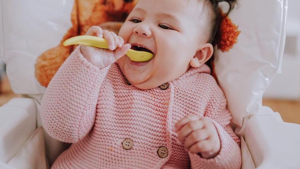 Gemasnya Sea, Bayi Cantik Sharena Delon yang Mulai Lahap Makan