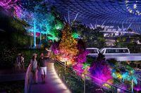 (Changi Airport Singapore)