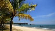 Turis BAB Sembarangan di Pantai Malaysia, Diberitakan Media Dunia