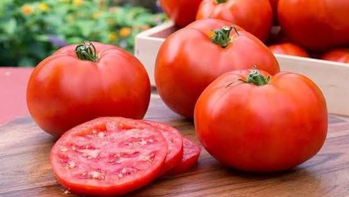 Tomat cocok untuk lalapan sehat siang ini. Foto: Istimewa