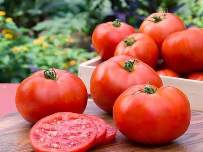 12 Manfaat Tomat untuk Kesehatan, Kamu Harus Tahu!/Foto: Istimewa