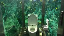 Kamu Pasti Nggak Percaya, Ini Toilet di Dalam Akuarium