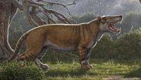 Singa Purba Raksasa Ditemukan di Kenya