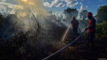 Layani Permintaan Pasar, Brasil dan Indonesia Babat Lebih Banyak Hutan
