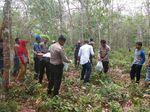Potongan Kerangka Manusia Ditemukan di Kebun Karet Riau