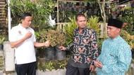 Desa Nglurah di Jateng Jadi Sentra 130 Jenis Tanaman Hias