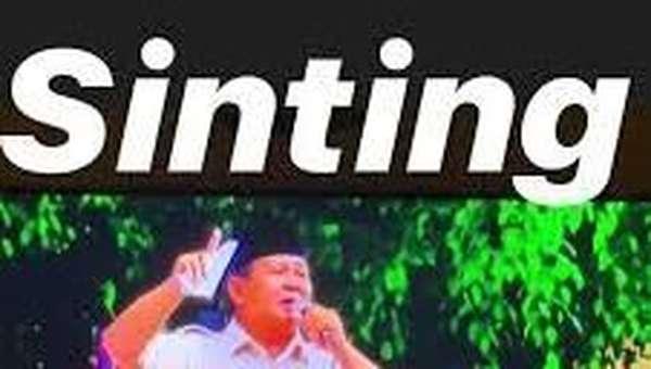 Ini Postingan Berbahaya Erin Taulany yang Dinilai Hina Prabowo
