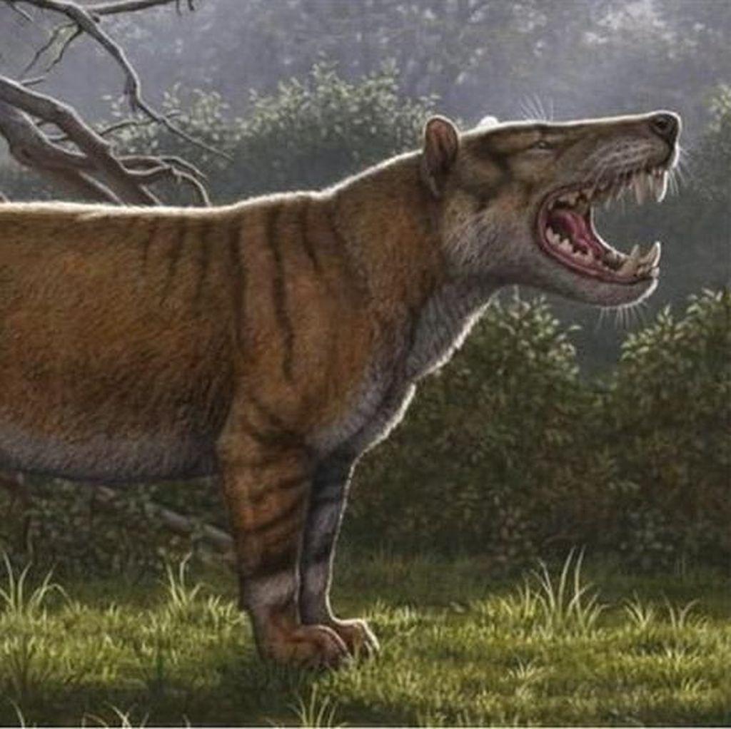 Fosil Singa Raksasa Ditemukan di Laci Sebuah Museum di Kenya