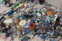 Sampah-sampah yang menggunung (Dr Jennifer Lavers/ABC Australia)