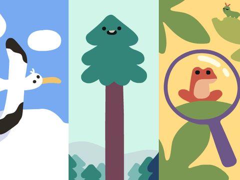 Beberapa spesies yang ditampilkan oleh Google Doodle
