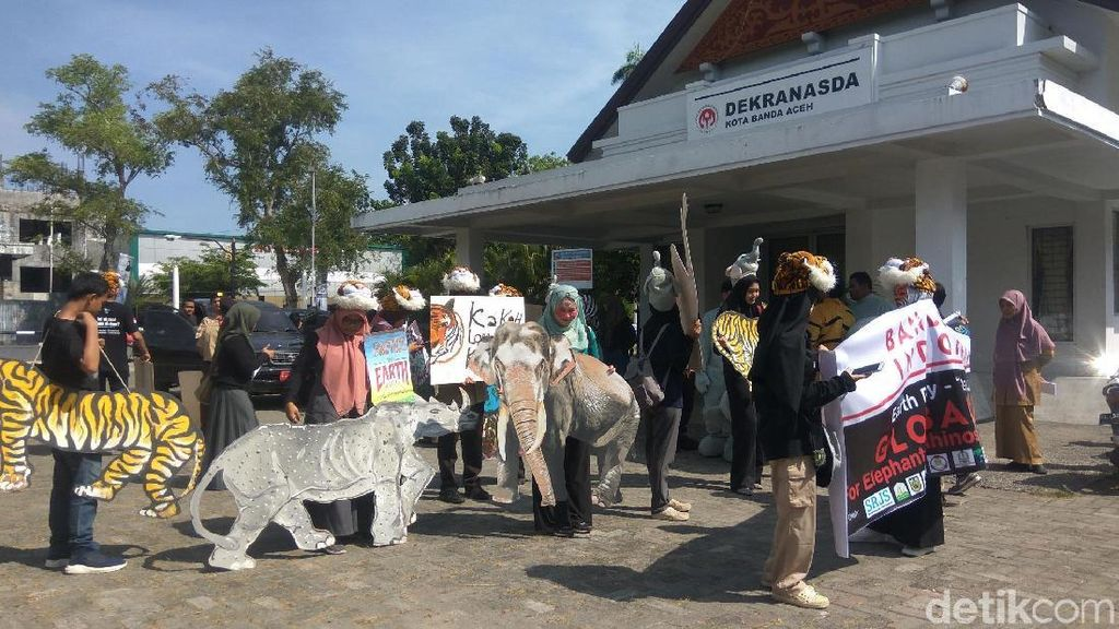 Hari Bumi di Aceh, Aktivis Serukan Perlindungan Gajah hingga Harimau