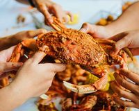 Dijamin Ketagihan! Pencinta Kepiting Harus Coba Kepiting di 5 Tempat Ini