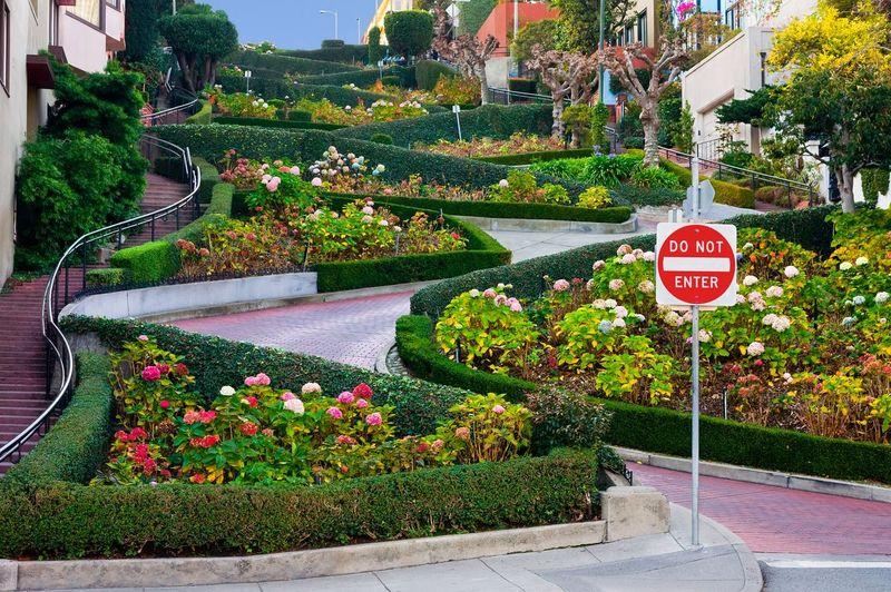 Adalah Lombard Street yang berlokasi di Kota San Francisco, California, AS. Pengenaan biaya akan segera dilakukan karena kemacetan yang terjadi di sana (iStock)