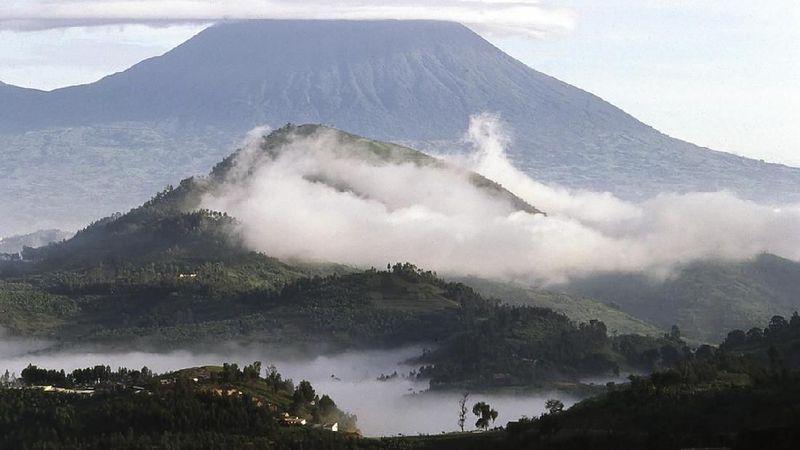 Inilah Taman Nasional Virunga ditemukan oleh Parc Albert di tahun 1925. Taman Nasional Virunga terletak di cekungan berair Albertine Rift di antara Uganda dan Rwanda. Total luasannya 7.800 kilometer persegi (iStock)