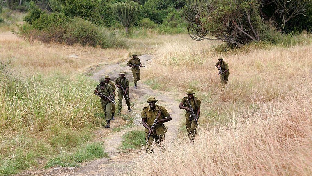 6 Penjaga Taman Virunga Kongo Tewas Diserang Kelompok Bersenjata