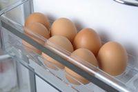 Simpan Telur di Kulkas, Wanita Ini Temukan Anak Ayam yang Menetas