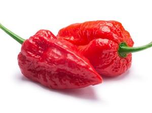 Umami hingga Ghost Pepper Masuk 17 Kosa Kata Kuliner Baru Merriam-Webster