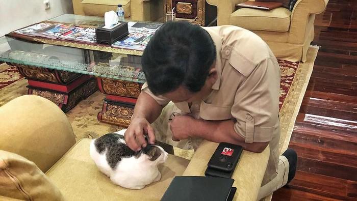 Prabowo dan hewan peliharaannya. (Foto: Instagram Rizky Imansyah)