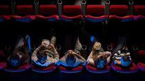 Buka Lagi, Bioskop Hong Kong-Taiwan Tayangkan Ulang Trilogi Batman