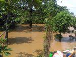 Banjir di Rawajati Pancoran Setinggi Atap Rumah