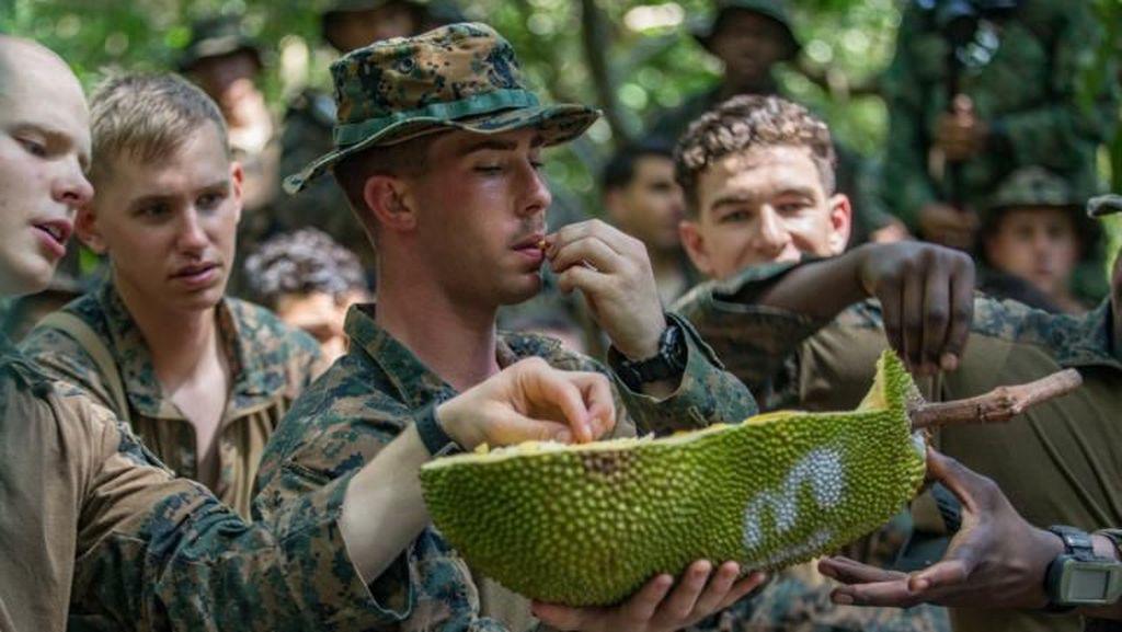 Durian dan Nangka Jadi Santapan Tim Pelatihan Korps Marinir AS di Hutan Singapura