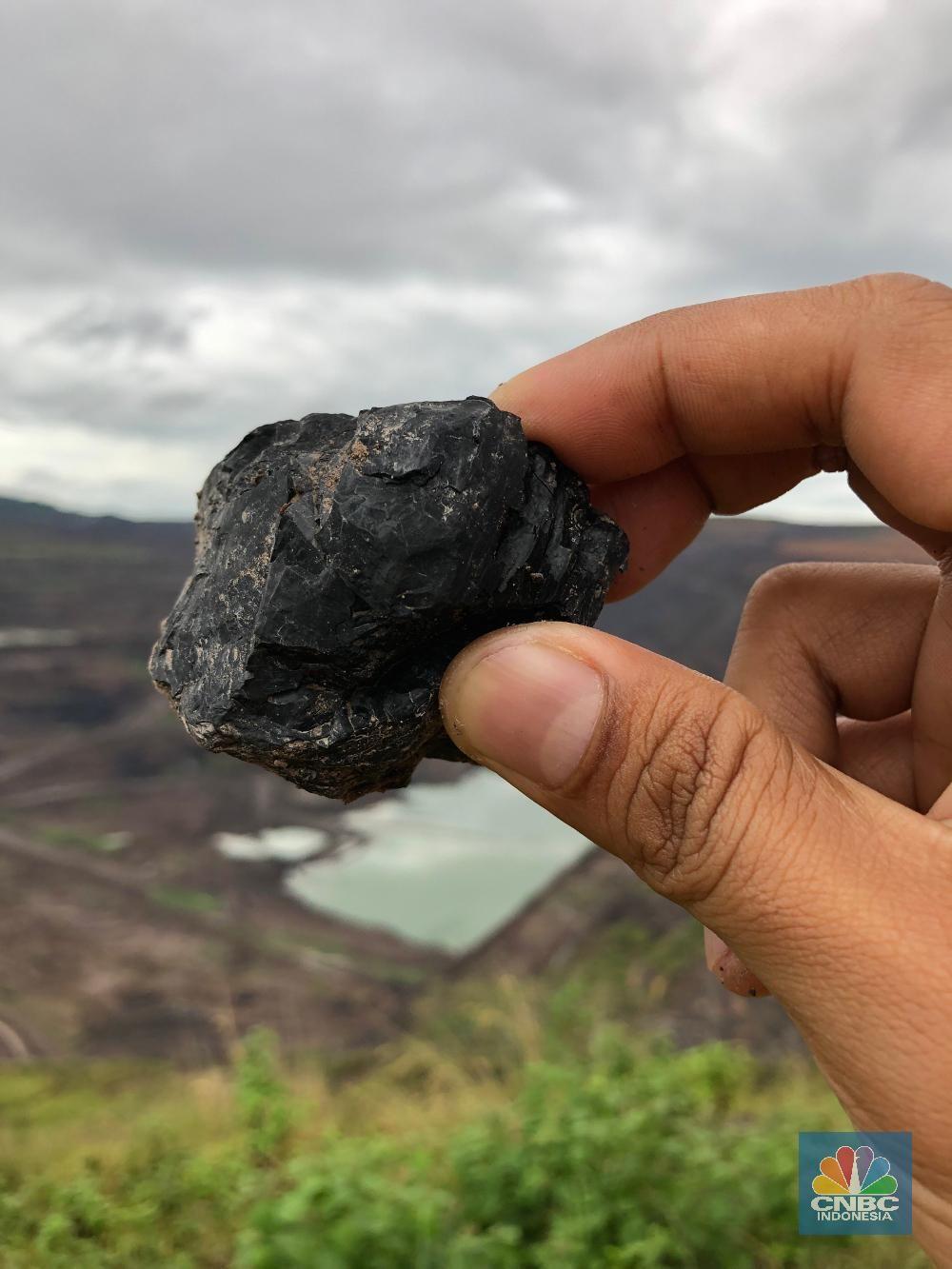 Tambang Kaltim Prima Coal