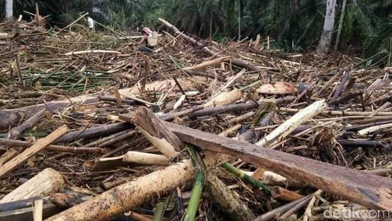 BNPB: 30 Orang Meninggal dan 6 Orang Hilang Usai Banjir di Bengkulu