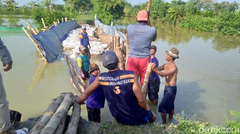 Tanggul Anak Sungai Bengawan Solo Jebol, Petambak Rugi Ratusan Juta