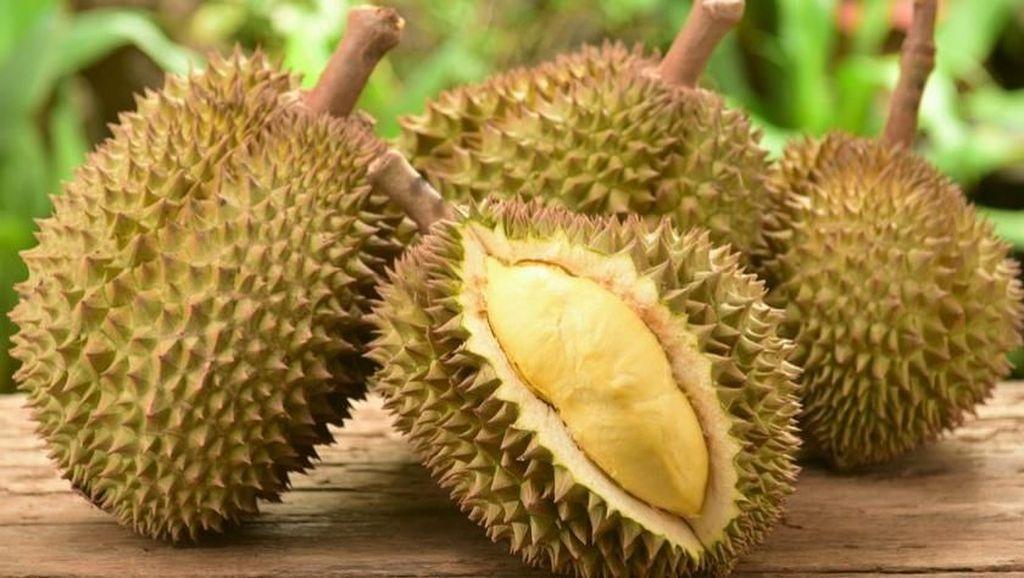 Durian Si Boneng Tanpa Biji dari Banyuwangi yang Jadi Buruan Wisatawan
