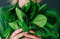 Simpan Sayuran Hijau Dengan Cara Ini Agar Awet Segar