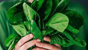 5 Cara Sehat Menikmati Aneka Sayuran Segar