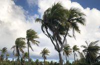 Menguak Tempat Terpencil di Bumi: Pulau Kekecewaan