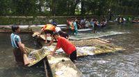 Orang Sekampung Cuci Karpet Masjid, Tradisi Ramadan di Semarang