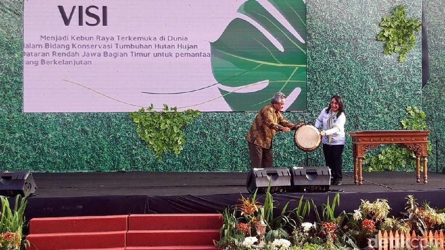Kebun Raya Indrokilo Boyolali (KRIB) Boyolali resmi diluncurkan. Di sana dapat dijumpai tumbuhan langka hingga Air Terjun Niagara versi lokal (Ragil/detikcom)