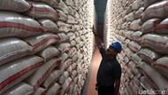 Bulog Sebut Serapan Beras Capai 10.000 Ton per Hari