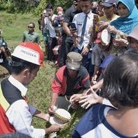 Seru Banget!Jokowi Panen Durian yang Ditanam di Karanganyar, Jateng