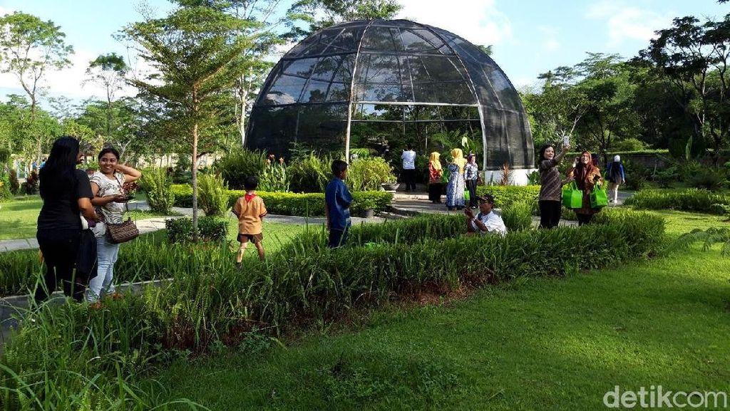 Tumbuhan Langka dan Air Terjun Niagara di Kebun Raya Indrokilo Boyolali