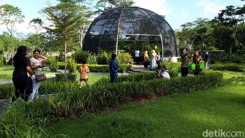 Kebun Raya Indrokilo Boyolali (Ragil/detikcom)