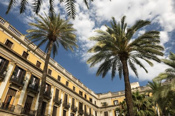 Dengan pohon-pohon palem di sudut-sudut Plaza Reial dan berbagai bangunan sejarah, membuat pemandangannya elok dilihat (iStock)