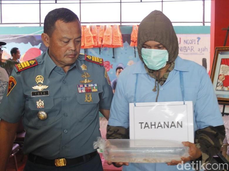 BKIPM: Nelayan Buru Benih Lobster karena Iming-iming Vietnam